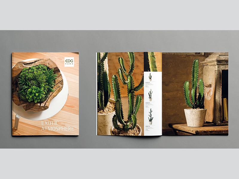 EDG brochures e cataloghi