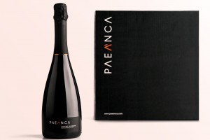 Paeanca packaging